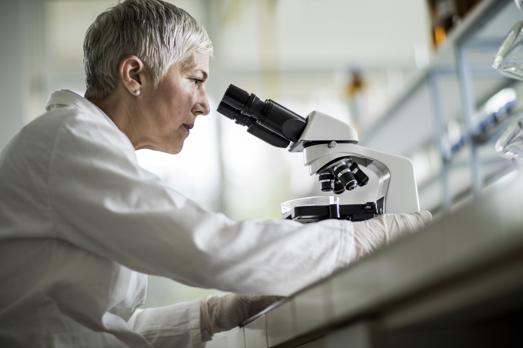 Low angle view of a mature scientist looking through a microscope in a laboratory.